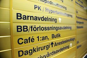 Foto: Izabelle Nordfjell/Arkiv