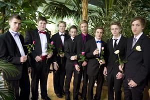Från vänster. Hans, Fredrik, Emil, David, Jonathan, Benny, Jonatan och Johan. Ståtliga herrar med rosor och mingelglas.