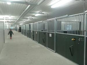 I det nya stallet har alla hästar en box. Spiltorna, där hästarna stod med baken mot stallgången är borta.