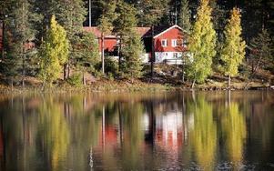 Studiefrämjandet är intresserat av stugan. Foto: Staffan Björklund