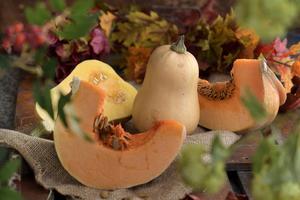 Pumpa är en gammal kulturväxt som använts till mat i tusentals år. Det är hög tid att återupptäcka den.