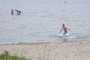 Roger, Vera och Viggo Brokvist trotsar vädret och badar fast det är kallt.