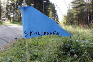 Sveriges största motionslopp, Skoljoggen, fyller 30 år i år.