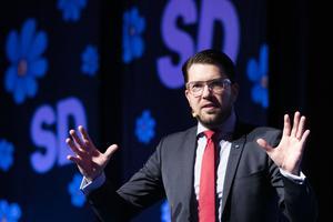 Sverigedemokraten Börje Brandhill kritiserar media och journalister. På bilden SD:s partiledare Jimmie Åkesson.