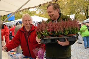 Blommigt. Ulla Karlsson och Börje Ivarsson har hittat ljung på marknaden och ska hem för att plantera.
