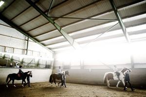 Det luktar häst och är lite kallt. Längs ned i ridhuset går hästarna Picasso, Robby och Max, på deras ryggar sitter stolta ryttare.
