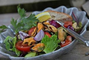 Musselsallad. Burkmusslor låter kanske inte så roligt, men med rödlök och blandade salladsgrönsaker blir det en god sommarsallad.