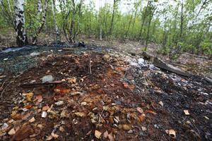 Hundratals år av industriverksamhet har lämnat spår. Områdets föroreningar måste undersökas och förmodligen saneras.