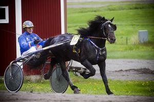 Jan-Olov Persson och Järvsö Rune vann efter en kalasstart.