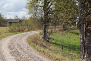 Gamla landsvägen är något av en pulsåder genom hela Sässman-området. Men ekonomin för underhållet av vägen är en fråga att lösa, eftersom det är flera markägare med i bilden och vägen inte har rätt till statligt stöd.