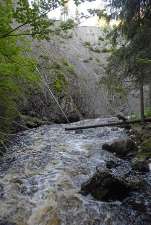 Forsen blir till en å som ringlar sig genom den kanjon Styggforsen är.
