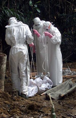 Sverige har god beredskap och god hygien. Vi bör bistå de eboladrabbade områdena, anser skribenten.