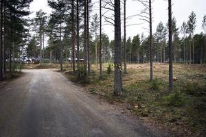 På det här området, till höger om nuvarande infart, kommer Malnbadens camping att expandera med nya stugor och flera uppställningsplatser för husvagnar och husbilar.