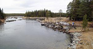 Härifrån och 2,5 kilometer nedströms Gimån stängs fisket av från och med den 9 augusti.