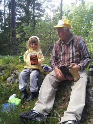 Rebecka 3½ år, betraktar med stolthet sin första blåbärsplockare som hon fått av Lars.