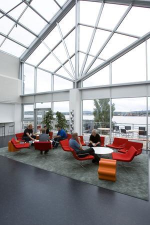 Arbetsmiljöverket dömer ut kontorsarbetsplatserna på Sjögatan. Miva måste fixa med