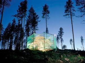 Ilkka Halso: Untitled (5) ur serien Restoration