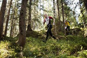 Det blir full fart i skogarna på Södra berget till helgen då Tour de Medelpad avgörs. Här syns Alice Hugosson, Sundsvalls OK, från en tidigare upplaga.