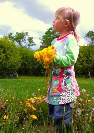 På väg hem en dag ville Ella 3 år plocka blommor.