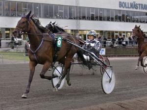 Robert Bergh med Johan Ennoble segrade i V65 Lopp 4.