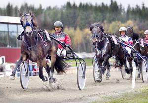 Signe Tabac med Lars-Åke Karlsson i sulkyn var överlägsna i V5-3.