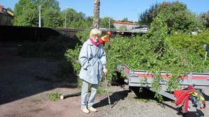 86-åriga Gunhild Lindström har bott i hyreshuset på Papegojvägen i 65 år. På sommaren har hon suttit under björken för att få svalka och på höstarna har hon tittat på alla småfåglar som brukar sitta i trädet. Foto: CARINA WIDELL