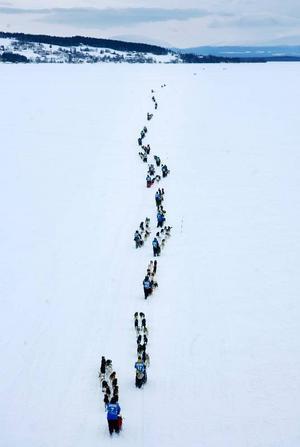 Ett samlat startfält ger sig iväg mot första kontrollen i Ljungdalen.