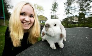 På Exempelthebunny kan du följa Moa Näslund och hennes kaninstjärna Exempel via instagram.