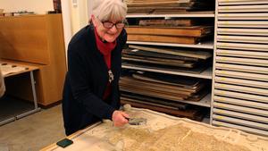 Lotta Örtendahl, som är ordförande i Vika-Hosjö hembygdsförening, hittade platsen på Stabergs-kartan där hennes hus tidigare låg.
