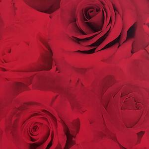 Kärlek uppåt väggarna med tapet från Rusta, 149:-