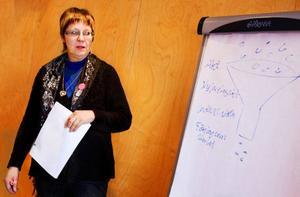 Projektledare Gun Myhr säger samhällets strukturer i många fall är anpassade för manligt företagande men att det håller på att ändras i och med ett ökat inflytande av kvinnor i samhället. Foto: Ulrika Andersson