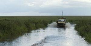Att köra i Serengeti kan vara ett äventyr.