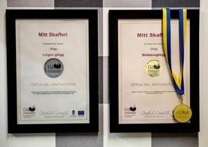Öppna SM i Mathantverk 2014 och 2015