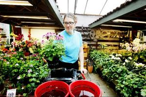 Malin Almquist har bara arbetat på Växtvaruhuset i några veckor men stortrivs med jobbet. Östersund hyllar hon också som en bra plats för odling.