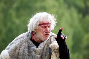 """""""Sven Wollter är en lysande Puck, hunsad ibland, vresig ofta, liksom alltid full i fan."""""""