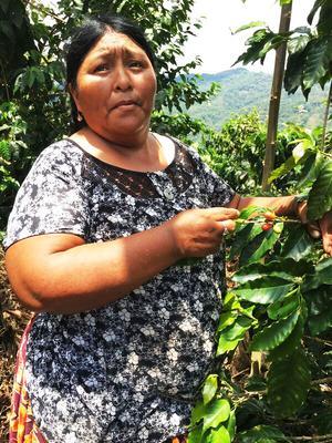 Under resan träffade de bland andra Vivian, som visade sina och hennes man Efraims kaffeodlingar. Vivian är en av kvinnorna som är medlem i en kooperation och som nu kan vara med och påverka beslut.