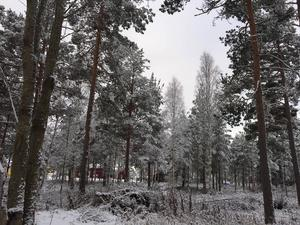 Lite snö gör livet ljusare i mörka november. Som i Moratrakten på lördagsmorgonen.