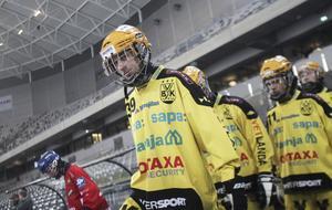 Martin Landström på Tele2 Arena när Vetlanda slog Edsbyn i P20-finalen.