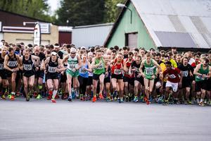 Starten går för den fjärde upplagan av Spring en mil - vinn en mil. Till höger, i grön tröja, till höger, ser vi dagens snabbaste man, Rasmus Grelsson. Trångsvikenlöparens tid, 30.49, är nytt banrekord.