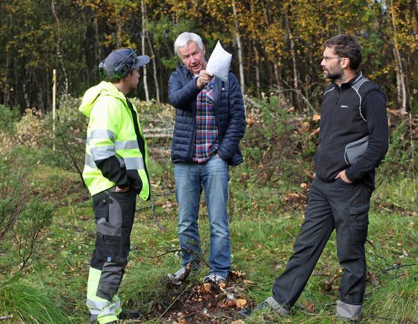 Lullen Hoflin planerar tillsammans med Tobias Myhr och Lars Sundmark var återplantering av björk kommer att vara aktuell för att inte störa omgivningens synintryck med snölagret.