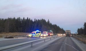 En bil har krockat med en älg på E14 i höjd med Dvärsätt på fredagsmorgonen.
