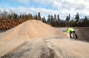 Torbjörn Hed inspekterar en hög med sågspån. Bland bränslet finns också till exempel så kallad grot, vilket står för grenar, rötter och toppar. Virkeslagret i bakgrunden finns delsvis som säkerhet om vintern blir extra kall.