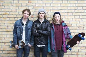 Rot – Ride on tree – är Anton Axellis, Felix Elofssons och David Delivs gemensamma skateboardföretag.