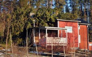 Ett hus i Söräng fick oväntat besök när en stor gran föll över taket.