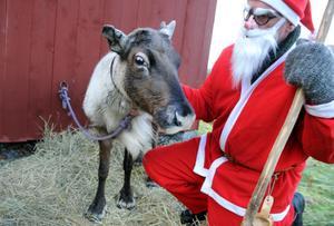 Tomtefar tog med sig sin bästa vän Rudolf till julmarknaden i Hårga.