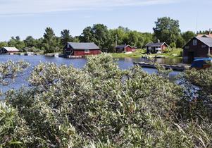 Limön är ett populärt utflyktsmål i Gävle och marken ägs av kommunen.