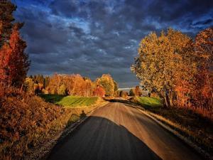 September:  Mötte hösten på Bränna. Offerdal.