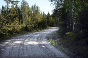 Skog på båda sidor om en slingrande väg, bitvis grus, är den förhärskande bilden längs Kustvägen.