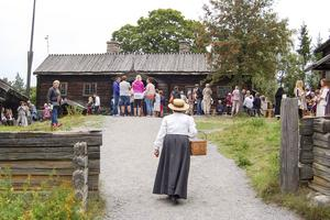 Älvrosgården Skansen där Härjedalen (och några från Jämtland) visade upp hembygdsföreningarnas arbete.