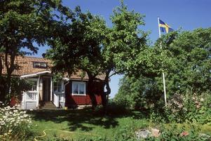 Tydligare lagar för vad som ska gälla för buskar och träd på tomter vill svenskarna se, enligt artikelförfattaren.